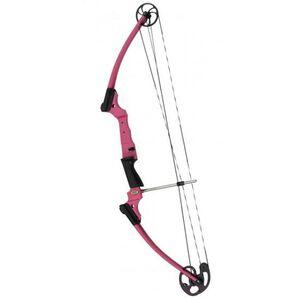 Genesis Archery Original Compound Bow Kit 10-20 lbs Draw Left Hand Pink 12076