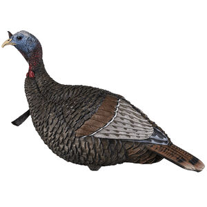 Flextone Thunder Jake Decoy 3 D Rubber Life Size Realistic Male Turkey