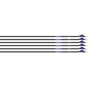 Beman ICS Indigo Carbon Fiber Arrow 500 White/Purple 6 Pack