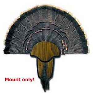 Hunter's Specialties Turkey Tail and Beard Mounting Kit Wood