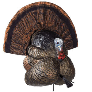 Flextone Thunder Creeper Decoy 3 D Rubber Life Size Realistic Male Turkey