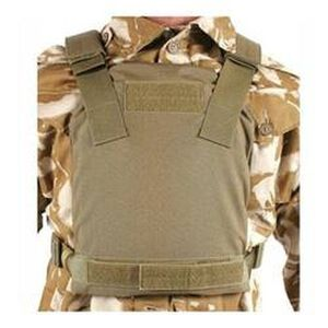 BLACKHAWK! Low Vis Plate Carrier Coyote Tan 32PC12CT